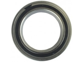 Enduro Bearings 61805 SRS - 25 x 37 x 7