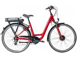 ORGAN'e-Bike Moteur Roue AR